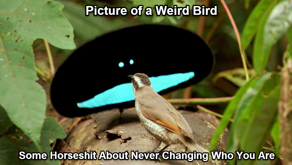 Picture of a Weird Bird... Some Horseshit About Never Changing Who You Are