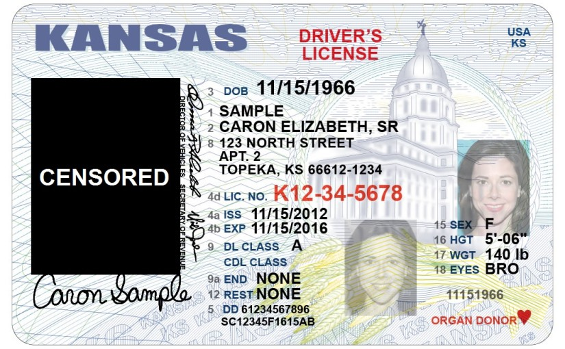 OUTRAGEOUS: New law requires topless driver's license photos